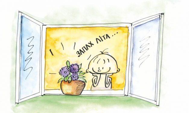 """""""Фіалка"""" – вірш про квіти"""