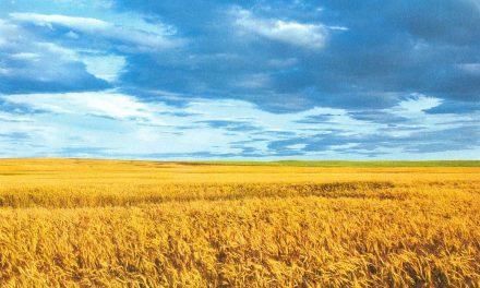 Свята Українська земля!